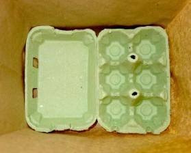 Boîte à oeufs en fond de sac