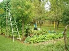 r1445_9_jardin-bardeau_56-2.jpg